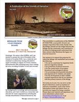 November 2020 newsletter cover